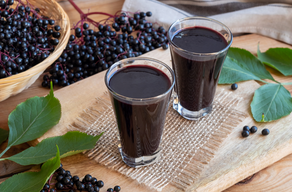 Tiny, but Mighty: Elderberry Matcha