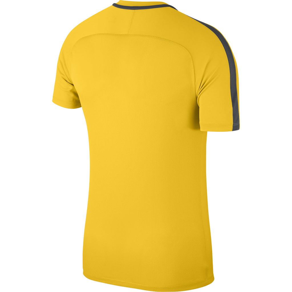 Nike Academy 18 Training Top (Tour Yellow/Anthracite)