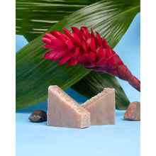 Load image into Gallery viewer, LAVA CLAY Healing Soap Bar-Earth Harbor Naturals-LAVA CLAY Healing Soap Bar-voicenatural