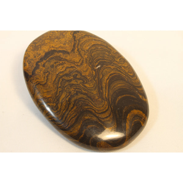 Stromatolite Polished Palm Stone