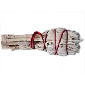 California White Sage - Large & Small Sizes