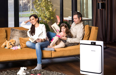Boneco P500 Air Purifier - Best-AirPurifier