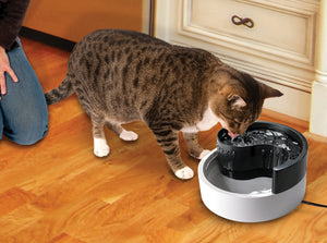 Pioneer Fung Shui Pet Drinking Fountain 1.7Lt