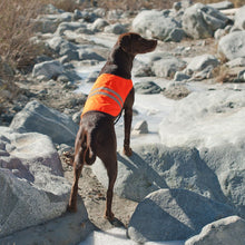 Load image into Gallery viewer, Zippy Paws Adventure Gear Cooling Safety Vest