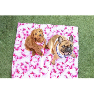 Big & Little Dog On-The-Go-Mats