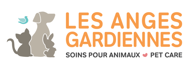 Montreal groomer, dog daycare, pet walking, pet sitter, pet grooming salon, dog trainer, doggie day care, pet boarding and much more. join our Angels and be part of our Angel community for lots of services and pet store products. Les Anges Gardiennes