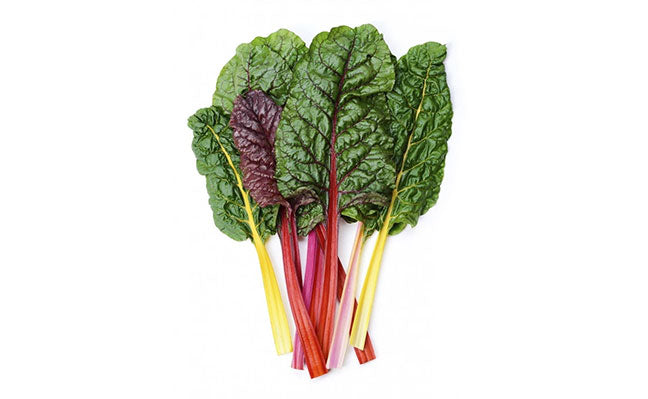 Rainbow Swiss Chard Aquasprouts