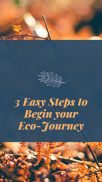 3 Easy Steps to Begin your Eco-Journey