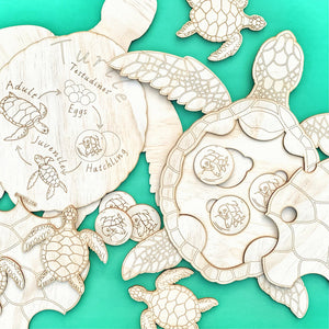 The Turtle - An interactive wooden Turtle life cycle set