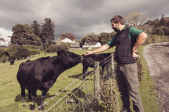 Jonathon with Aberdeen Angus cow
