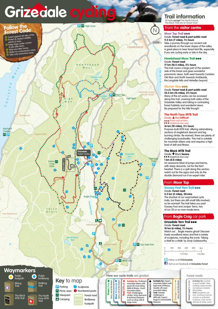 Grizedale trails