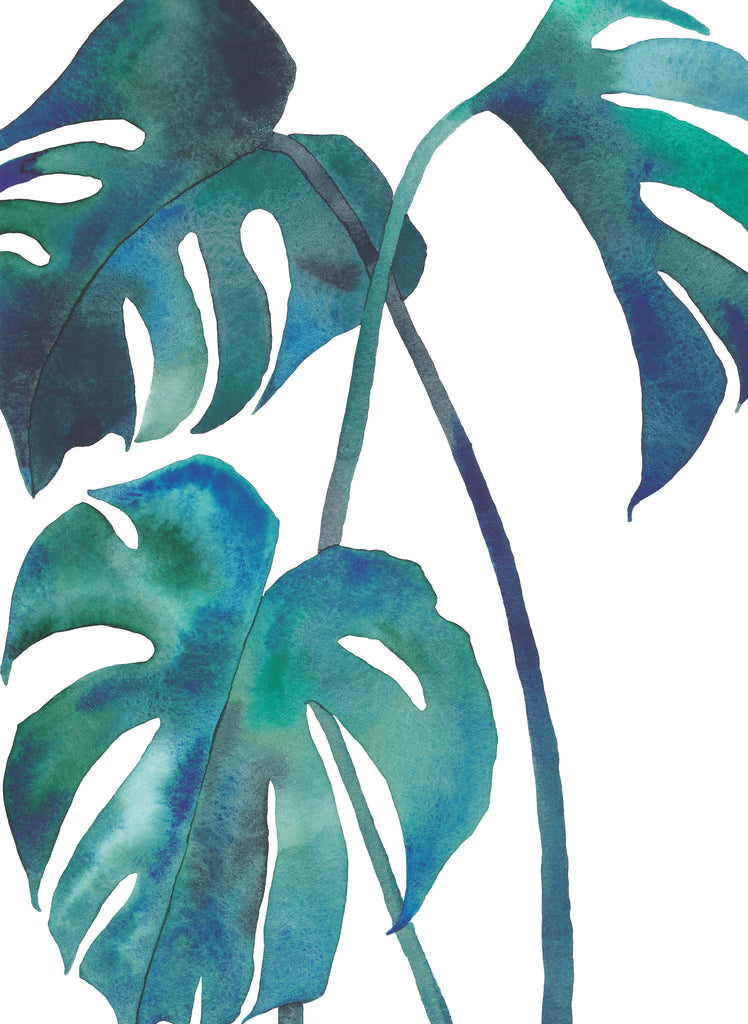 Monstera — Houseplant Watercolour Greeting Card