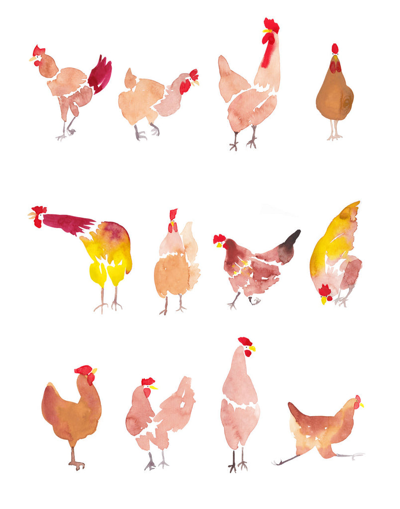 'Twelve Chooks' — Chicken Wall Art