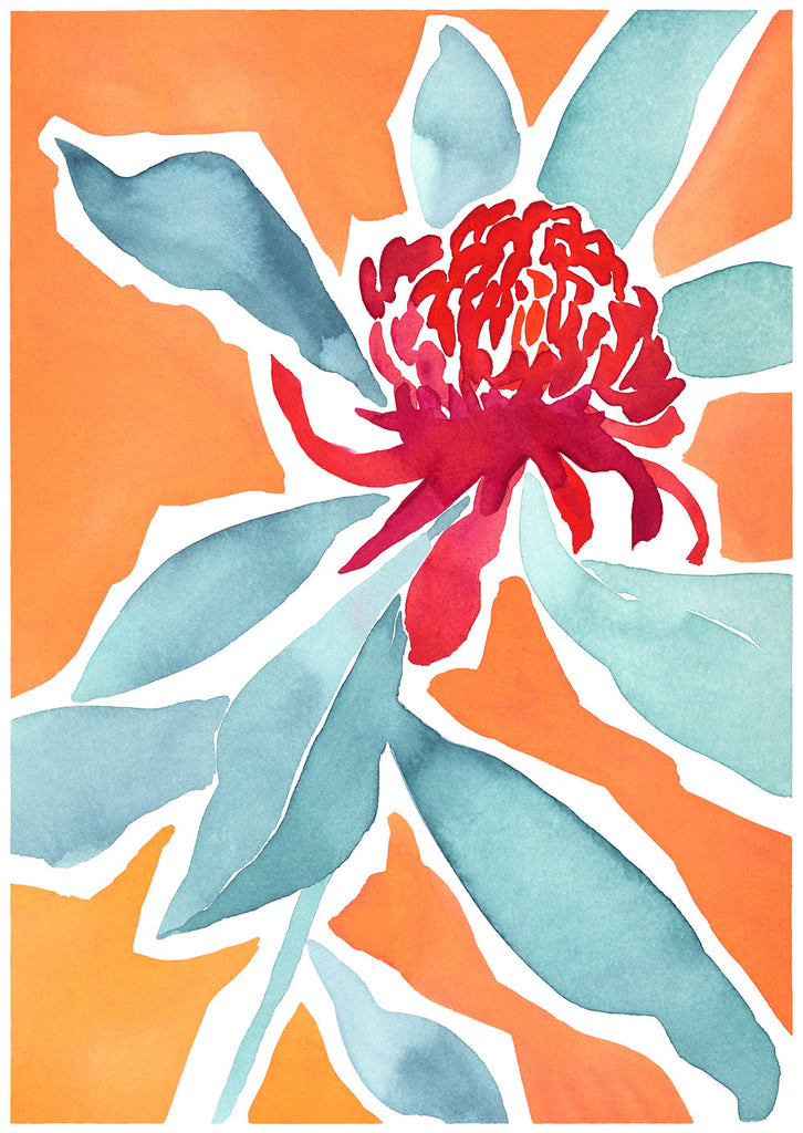 'Finding Strength' — Giclée Print of Native Waratah