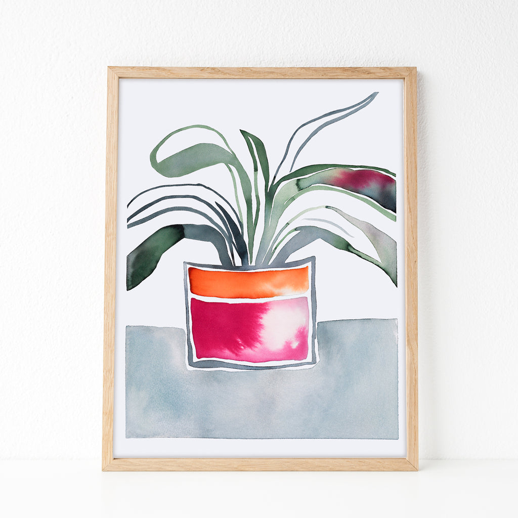 Kaffir Lily — Printable wall art, digital download
