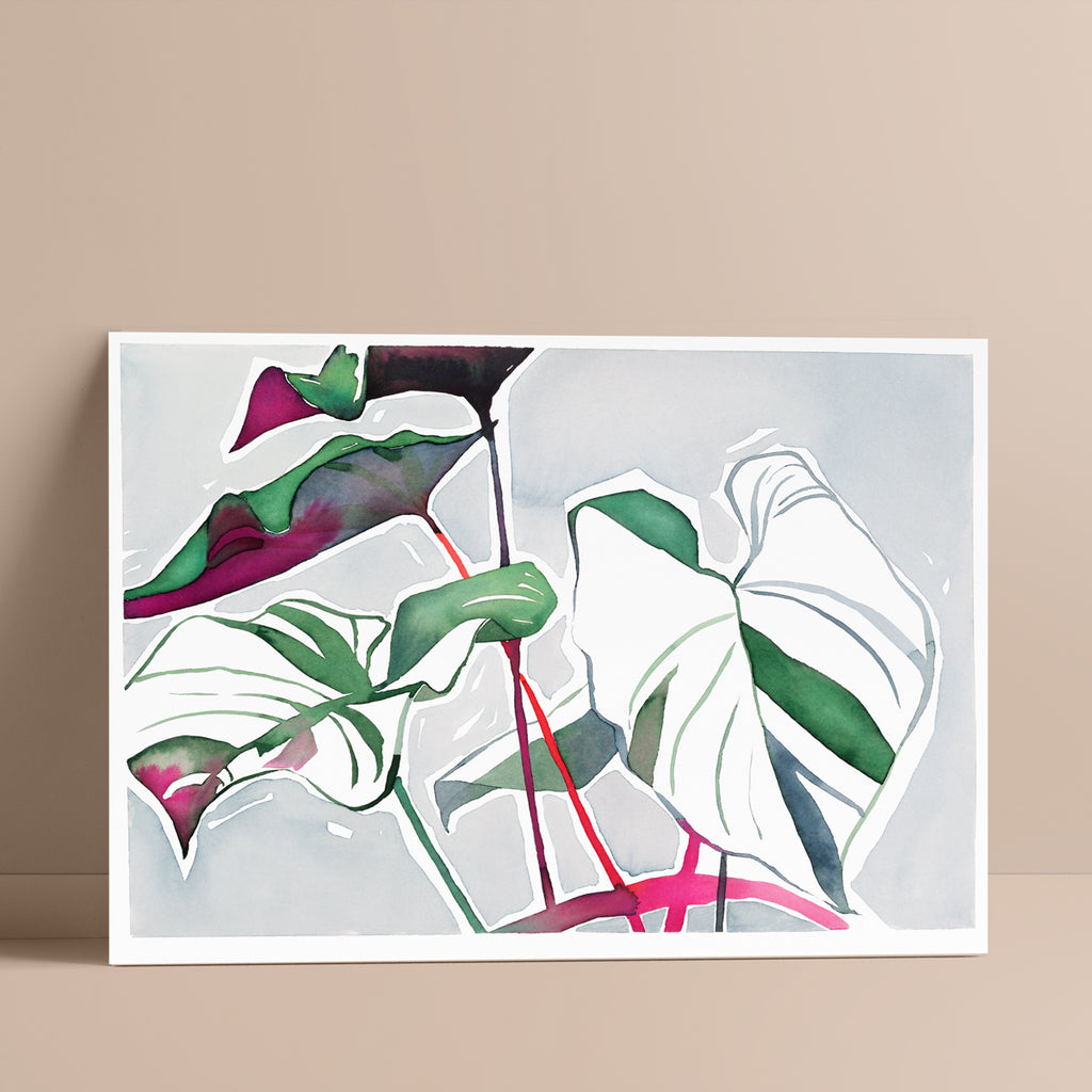 Philodendron — watercolour giclée print