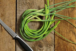 Local Garlic Scapes by TRUFFLES