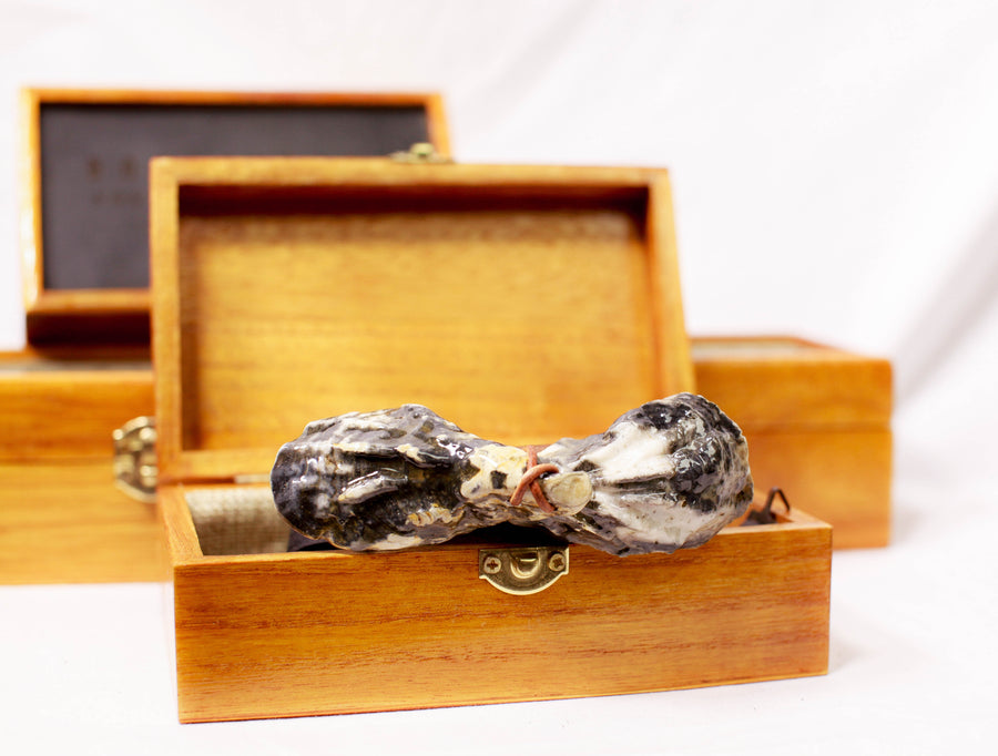 Boysterous Oyster Shell Bow Tie; SubtleTie; Brackish Bow Ties; Feather Bow Ties; Unique Bow Ties