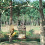 Mangeoire-Oiseaux-Style-Cage_01