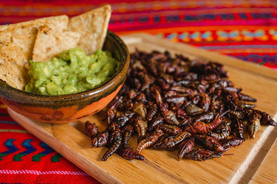 Unusual Mexican Food to Try When You Visit
