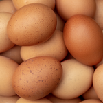 Dozen fresh eggs from Morning Farms available at Farmers Market