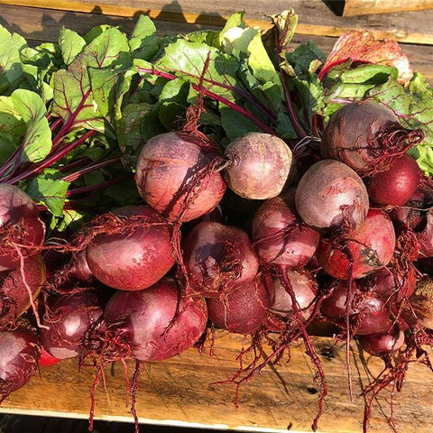 Beets (1 Bunch)