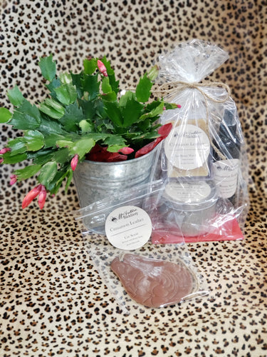 Scent Gift Pack - Cinnamon Leather