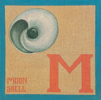 M for Moon Shell