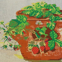 Strawberry Pot