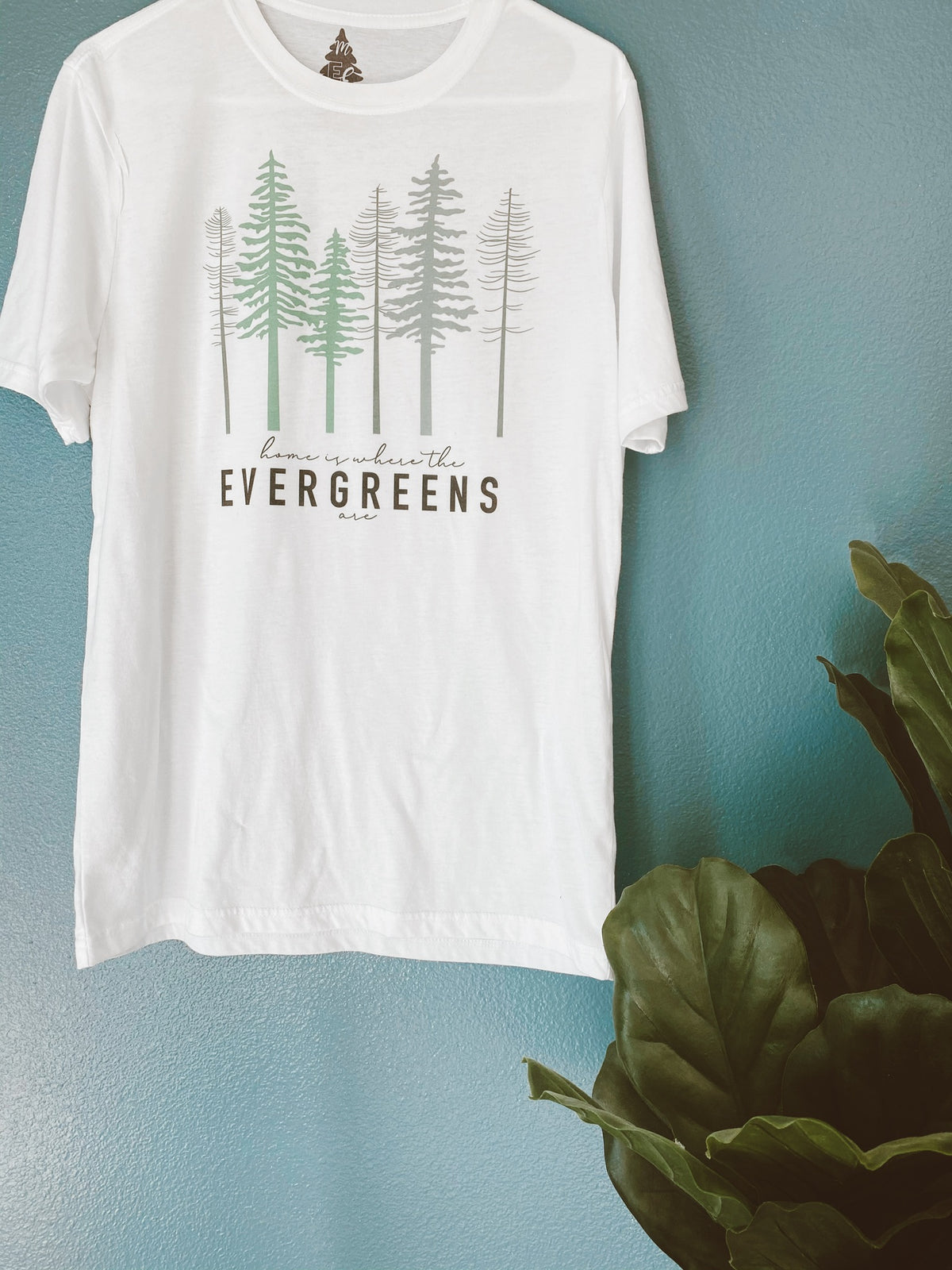 Home Is Where The Evergreens Are