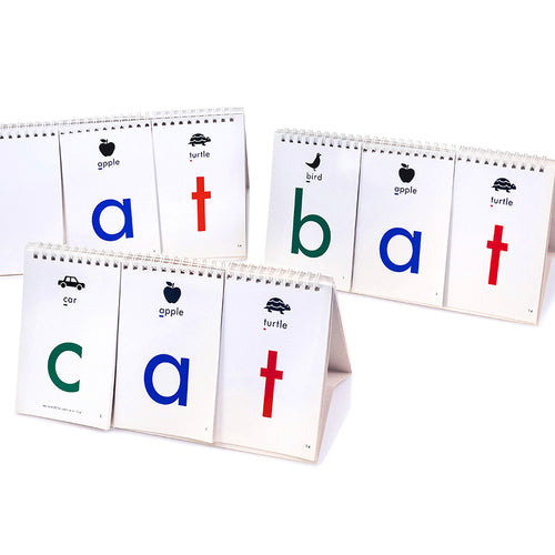 Is It a Word - Or Not? Phonics flip book game