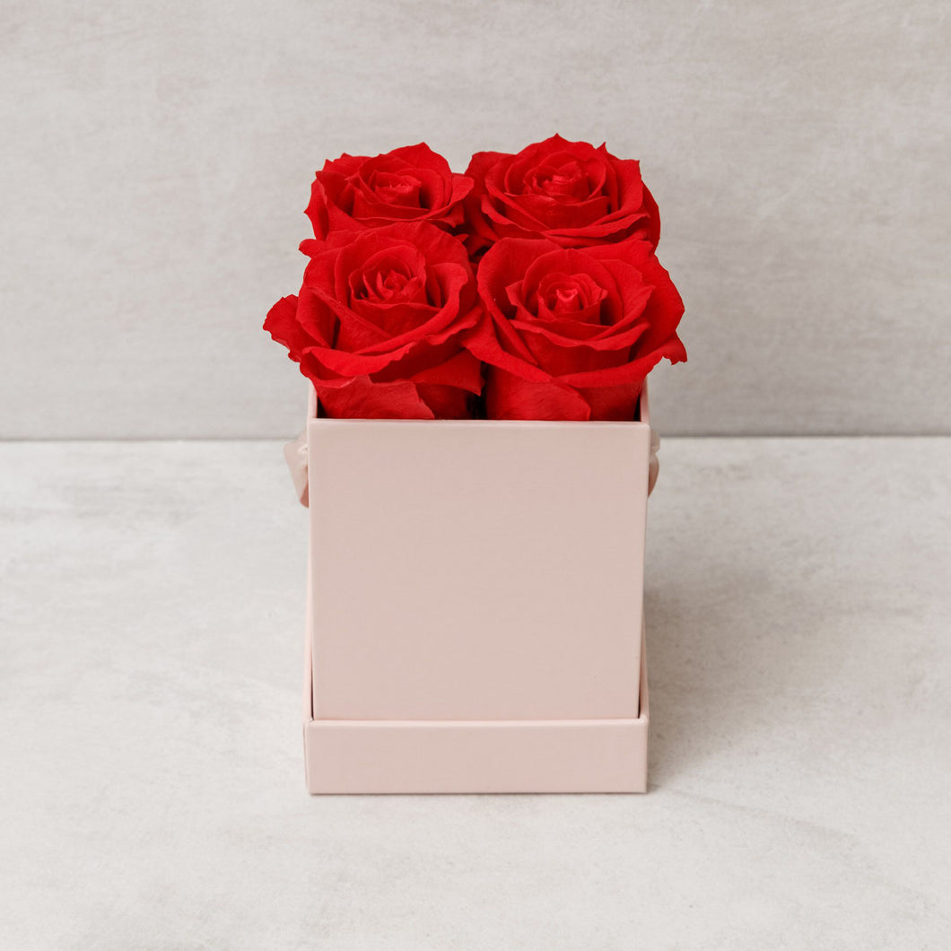 Four Red Roses in Pink Box