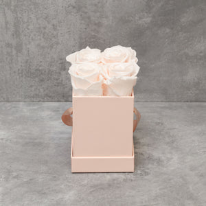Four Light Pink Roses in Pink Box