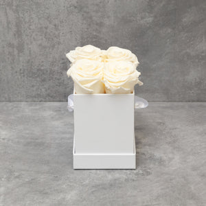 Four Champagne Roses in White Box