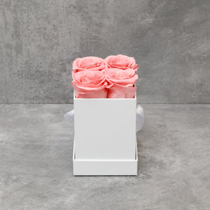 Four Pink Roses in White  Box