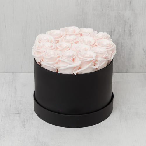 Small Round Light Pink Roses in Black Suede Box