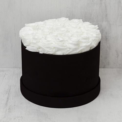 Medium Round White Roses in Black Box