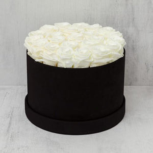 Medium Round Champagne Roses in Black Box