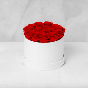 Small Round Red Roses in Ivory Suede Box