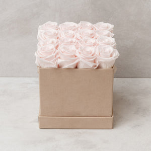Sixteen Light Pink Roses in Nude Suede Box