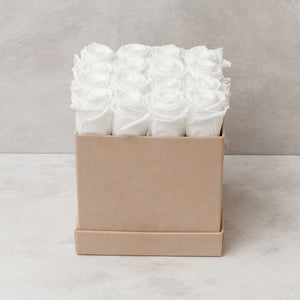 Sixteen White Roses in Nude Suede Box