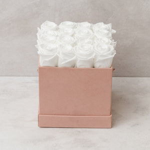 Sixteen White Roses in Pink Suede Box