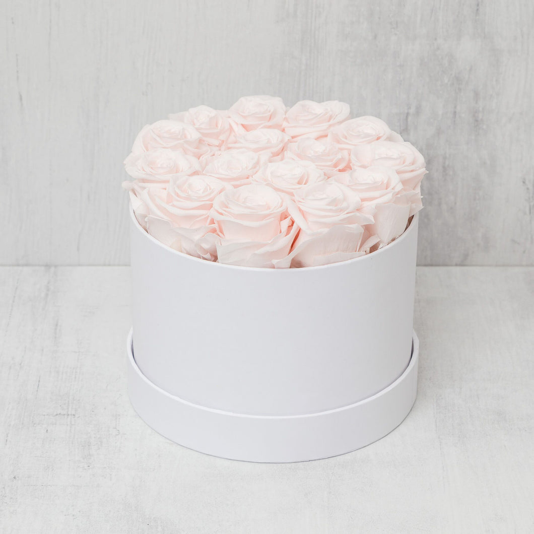 Small Round Light Pink Roses in White Box