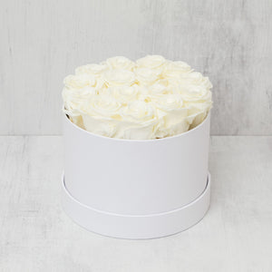 Small Round Champagne Roses in White Box