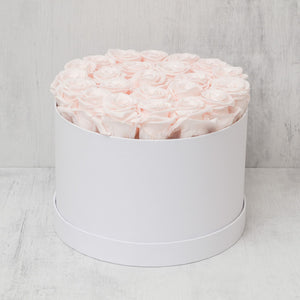 Medium Round Light Pink Roses in White Box