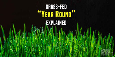 "What Does Grassfed ""Year-Round"" Mean ?  Ireland is one of the only countries in the world that can support grass-fed diary year round without chemical intervention!  AGN Roots Grass-Fed Whey"