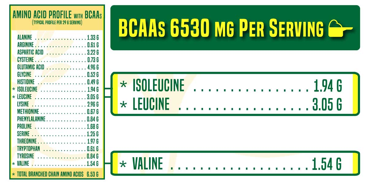 Whey Protein Isolate with Most BCAAs: AGN Roots Grass-Fed Whey