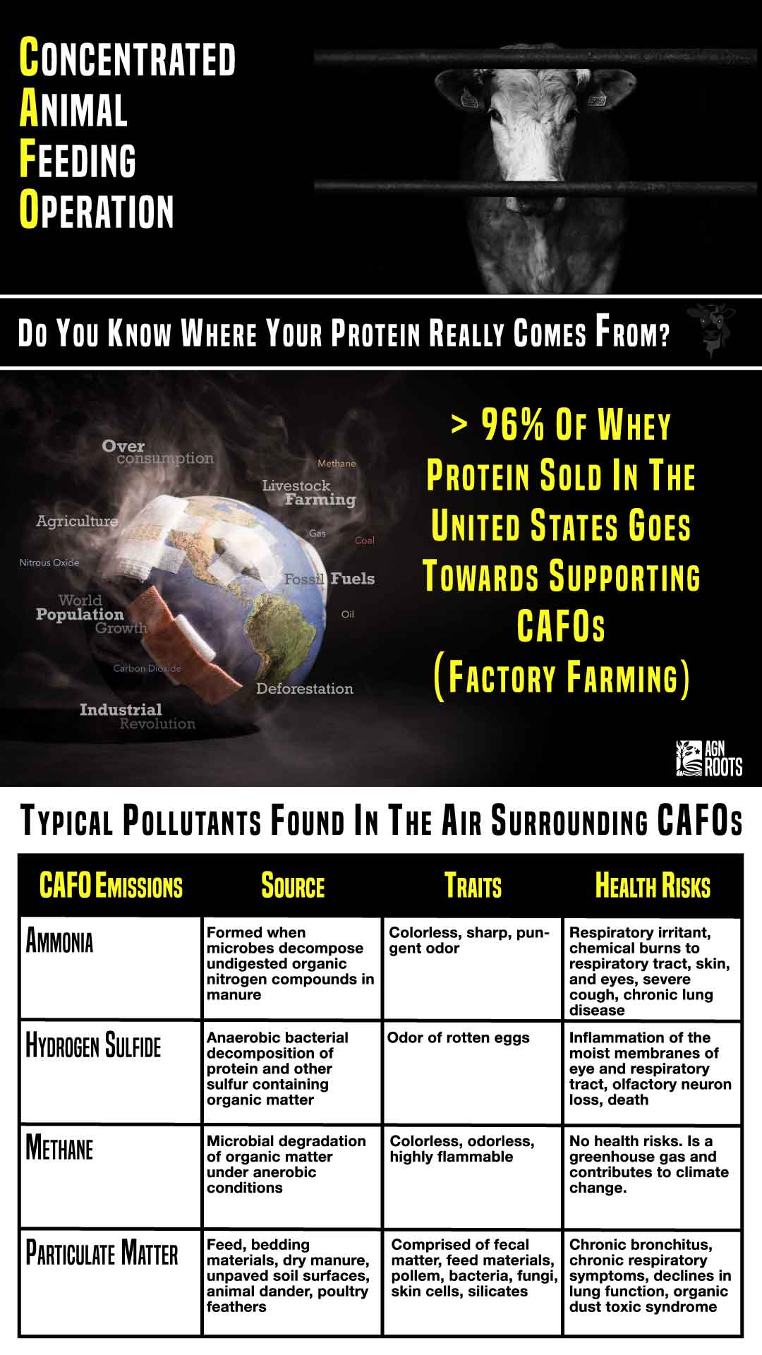 What Does CAFO Mean? AGN Roots Grass-Fed Whey