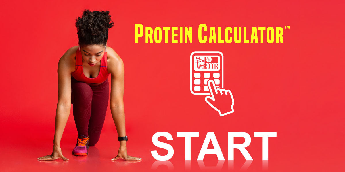 Protein Macro Daily Intake Calculator Individualized AGN Roots