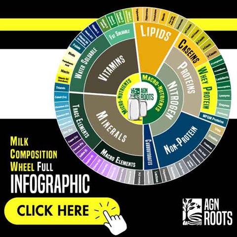 Whey Protein Fraction & Milk Composition Chart - AGN Roots - How much Whey is in Milk?